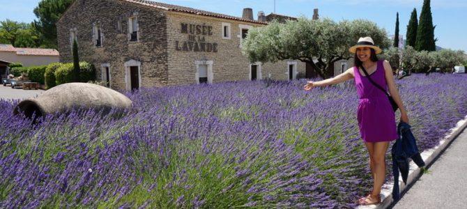 Provence. Muzeul lavandei, satul Gordes si Abatia de la Senanque. Cu autostopul