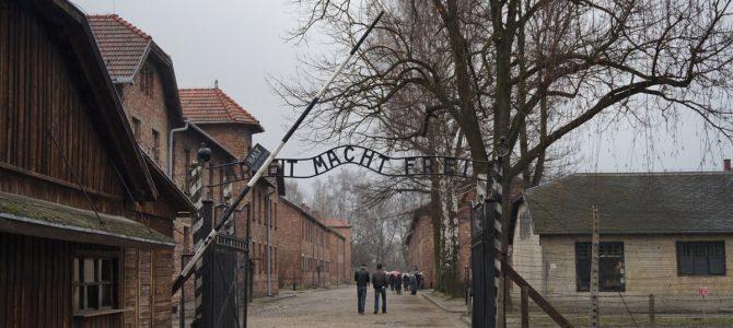 Auschwitz. O incursiune.