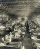 Gripa – Totul despre inamicul sezonier, cine este și cum se prezintă. O istorie a pandemiilor gripale.